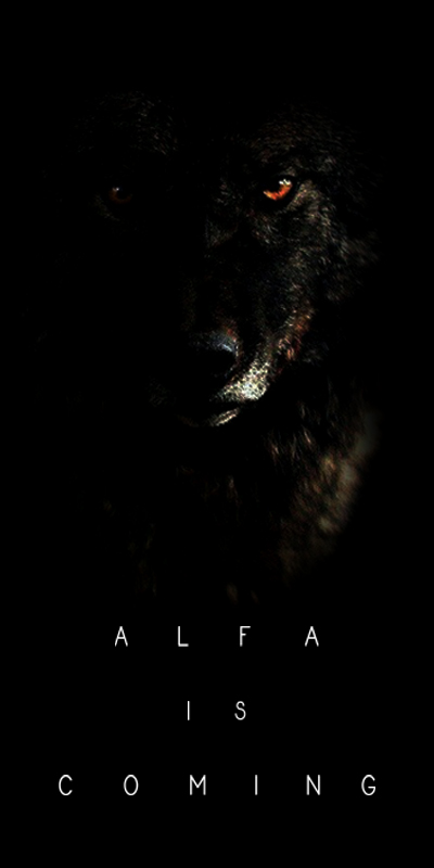 Alfa is coming